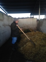 Tim Allen and the beloved Ballymaloe compost pile (well the beginnings of one)