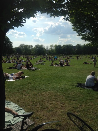 Clissold Park in 25 degree weather